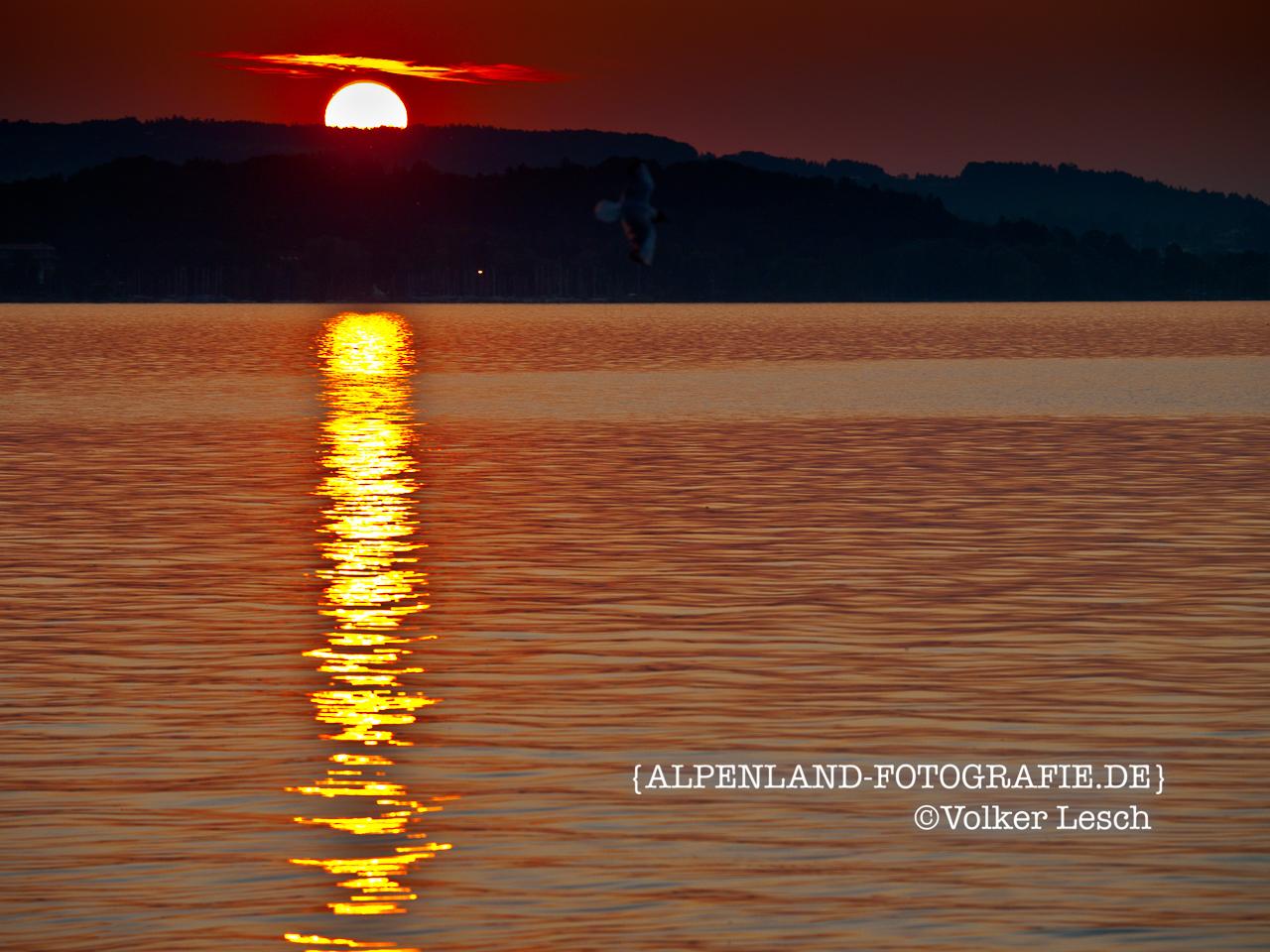 Chiemsee Sonnenuntergang © Volker Lesch