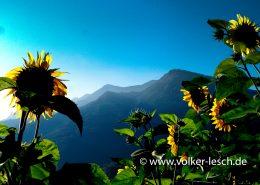 Mountainfloat Bad Reichenhall © Volker Lesch