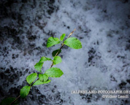 Josefstaler Wasserfall © Volker Lesch