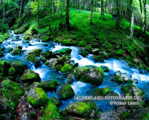 Tegernsee Rotach Egern Wasserfall