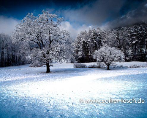 Winter im Nonner Unterland Bad Reichenhall