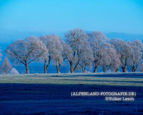 Bayerisches Oberland im Winter
