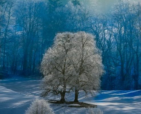 Nonn - Bad Reichenhall Winter© Volker Lesch - Alpenland Fotografie