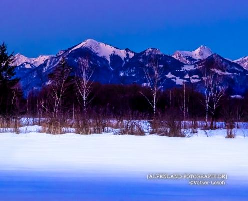 Das Bergener Moor im Winter © Volker Lesch - Alpenland Fotografie