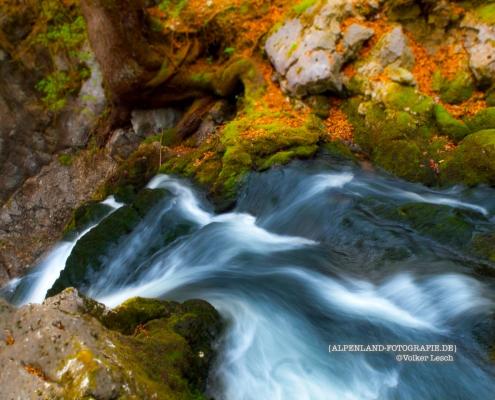 Gollinger Wasserfall © Volker Lesch - Alpenland Fotografie