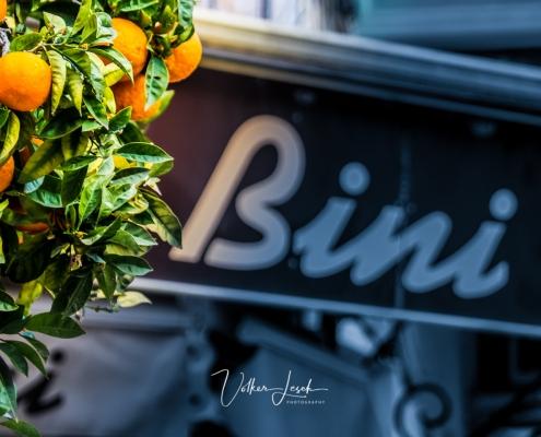 Mallorca Soller Orangen