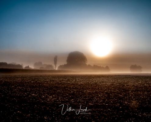 Sonnenaufgang an der Mainschleife