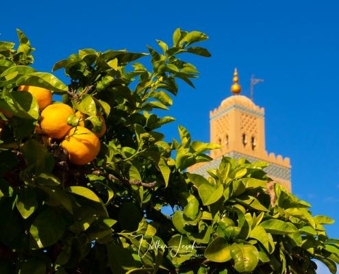 Marokko - Koutoubia-Moschee Marrakesch